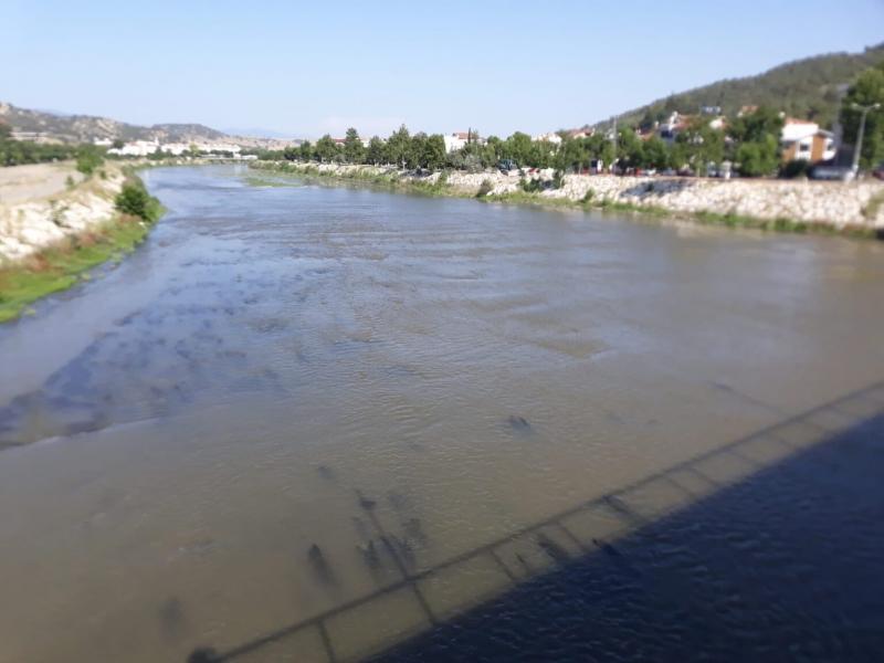 Irmaktaki Sular Yosunlardan Temizleniyor