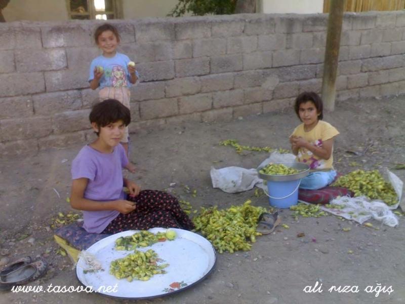 Gemibükü köyü fotoğrafları