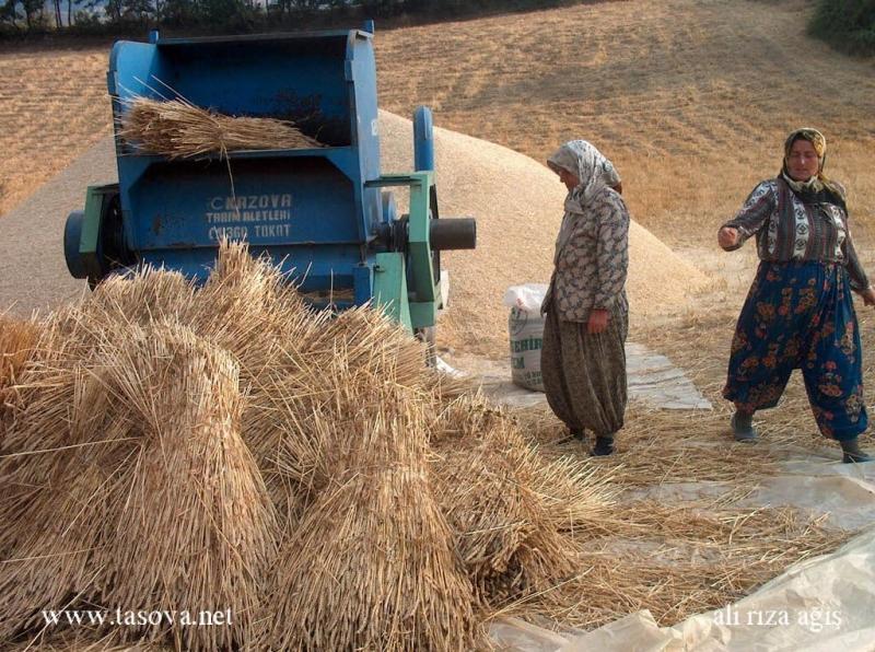 Sepetli Köyü fotoları