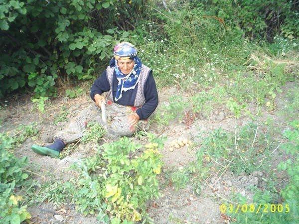 Çalkaya köyü fotoları