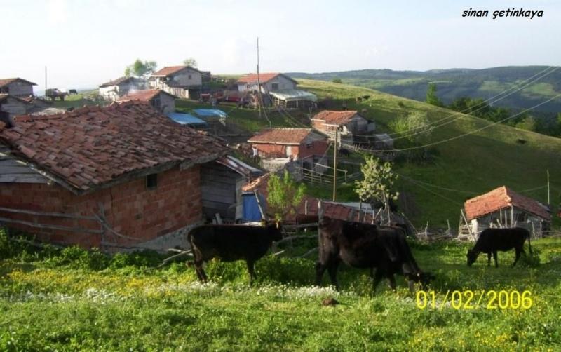 Kozluca köyü fotoları