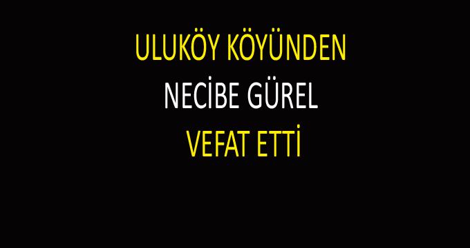 NECİBE GÜREL VEFAT ETTİ