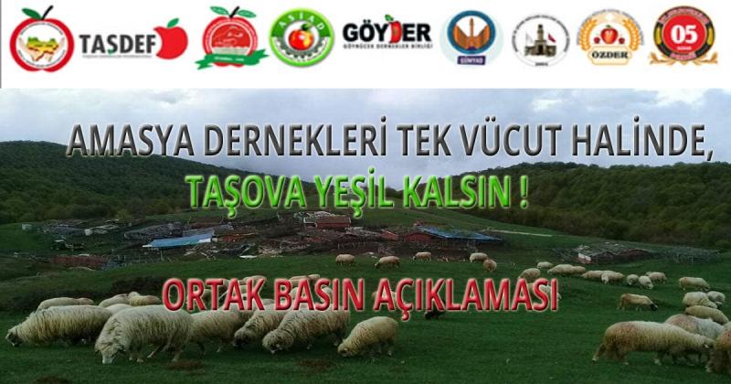 Amasya Dernekleri; 'Taşova Yeşil Kalsın!'