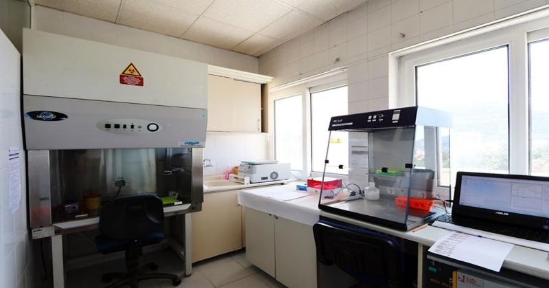 Amasya'da Koranaviüs(Covid-19) Testleri Yapılmaya Başladı