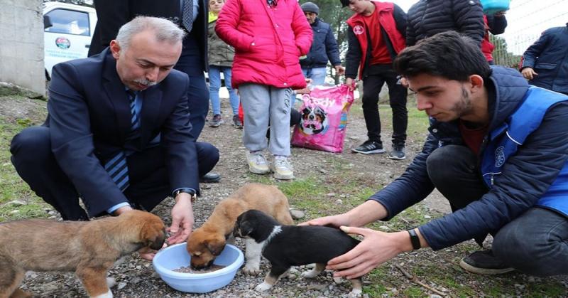 Başkan Öztürk ve Gençlik Merkezi Gönüllüleri Sokak Hayvanlarını Besledi