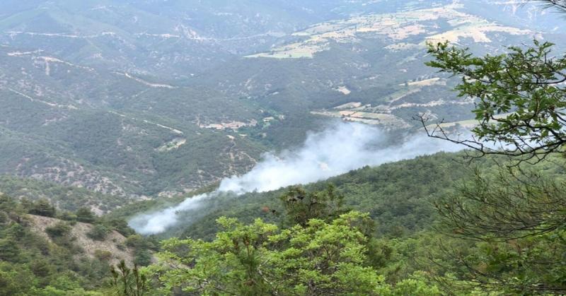 Boraboy'da Orman Yangını