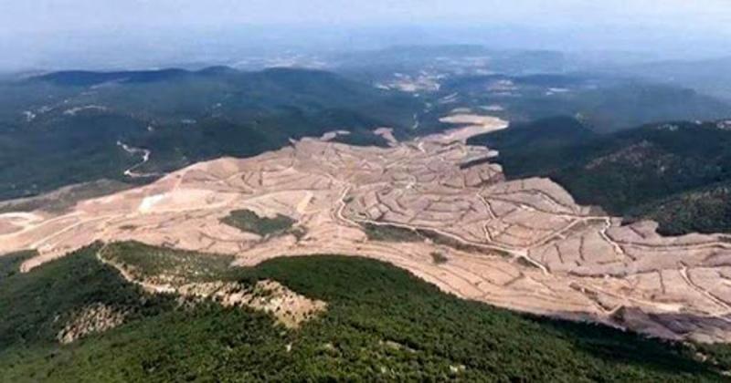 CHP Milletvekili Durmaz; 'Böylesine bir altın arama faaliyetine izin verilmesini anlamak mümkün değildir'