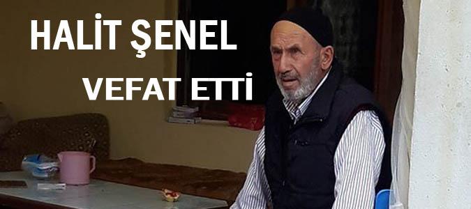 HALİT ŞENEL VEFAT ETTİ