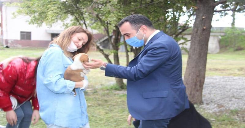 Kaymakam Çelik'ten Taşova Hayvan Barınağına Ziyaret