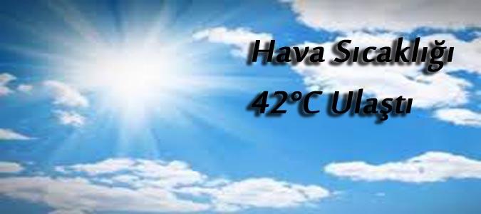 Taşova da Sıcaklık 42 Dereceyi Buldu..