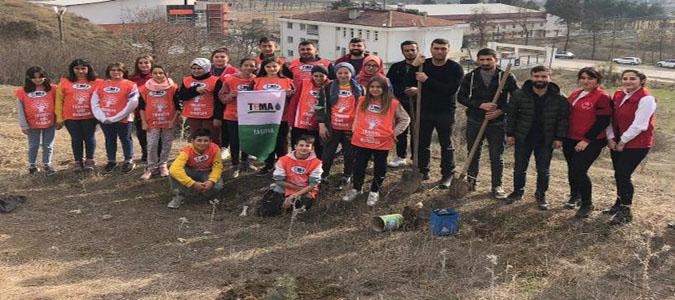 Taşova'da Fidan Dikme Etkinliği Düzenlendi