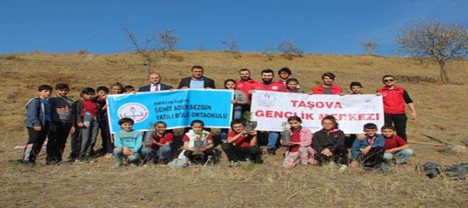 Taşova'da Fidanlar Toprakla Buluştu