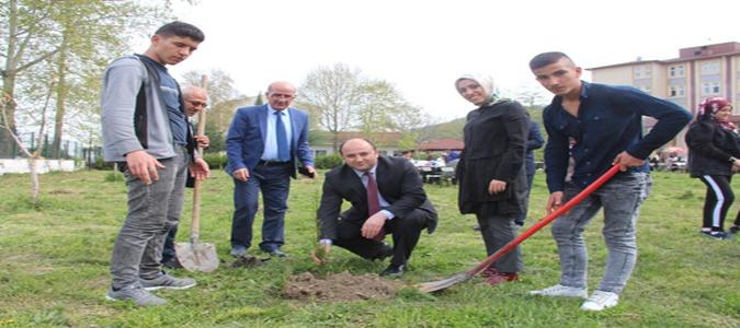 Taşova'da Orman Haftası Kutlandı