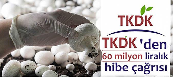 TKDK'den 60 milyon liralık hibe çağrısı