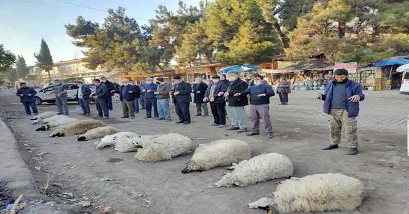 Uluköy'de Çiftçiler Yağmur Duasına Çıktı