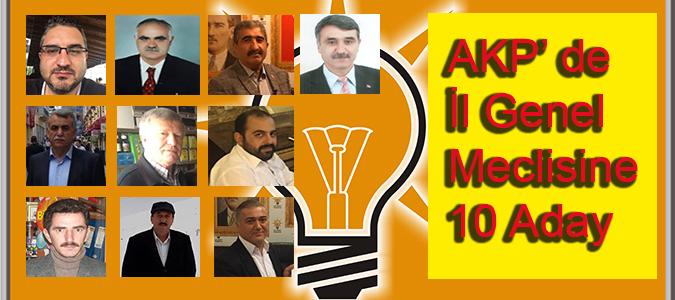 AKP'de İl Genel Meclisine 10 Aday
