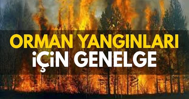 İçişleri Bakanlığından 'Ormanlık alanlarda ateş yakılmaması' Genelgesi